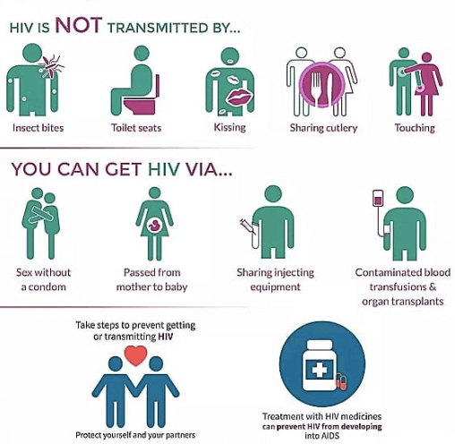 graphic to show World Aids Day - how aids is transmitted